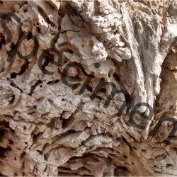 Image texture de bois téléchargeable à monprofdesigner.com