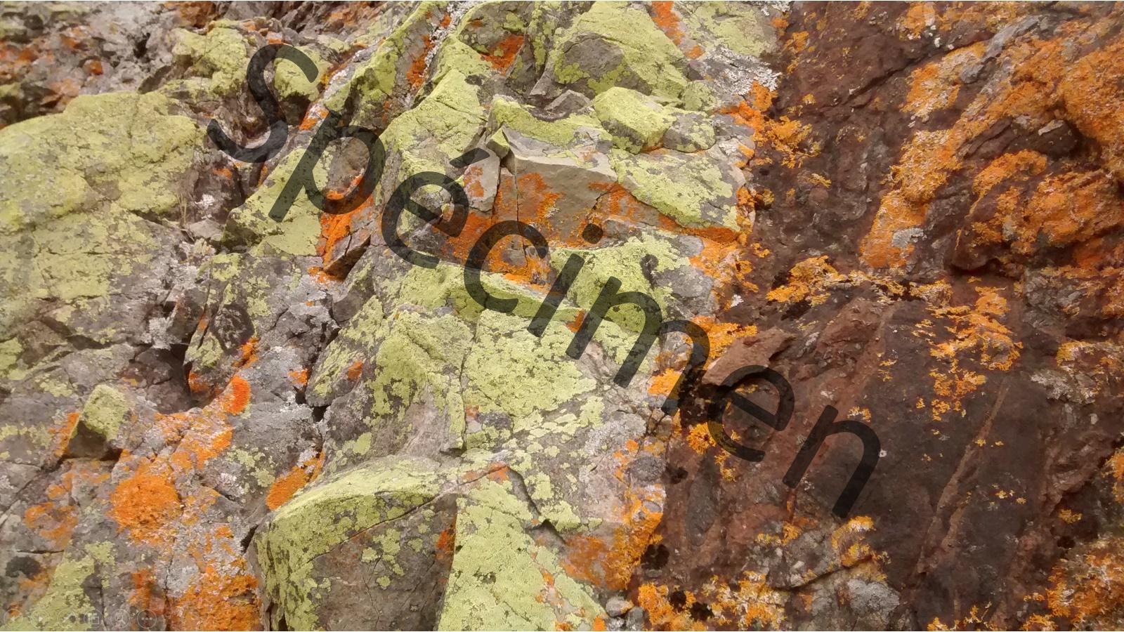 texture de roche téléchargeable à monprofdesigner.com