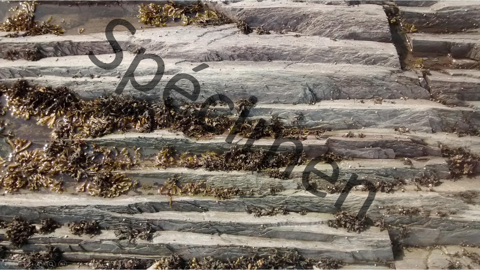 Texture minérale téléchargeable à monprofdesigner.com
