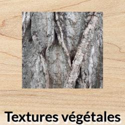 Textures végétales